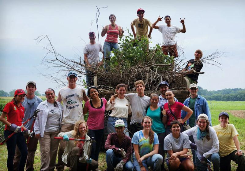 2012 CEFS interns at the Agroecology Education Farm helping to clear brush, weed, and remove trees.