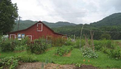 FIG_farm