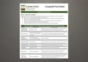 Group GAP