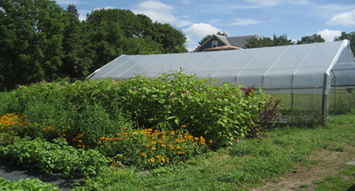 New_Entry_farm