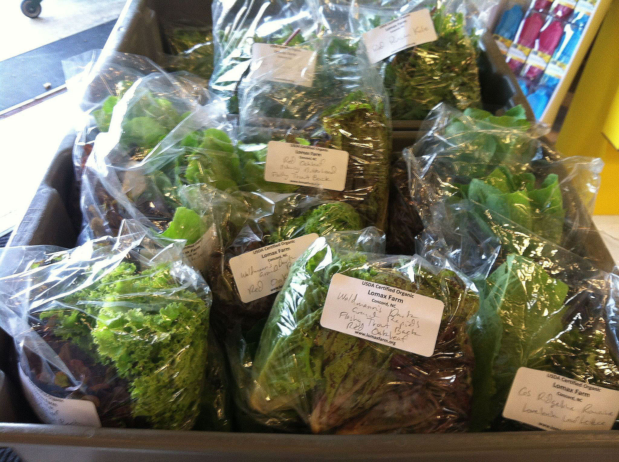 Organic Lettuce from Lomax