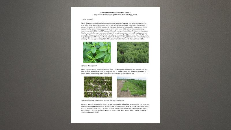 Stevia FAQ