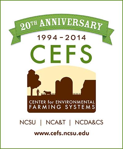 CEFS 20th Anniversary