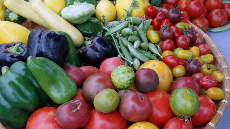 farm-to-fork-colors