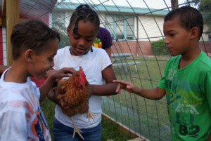 foodcorps-kids-chicken