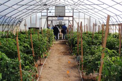 Small Farm Unit