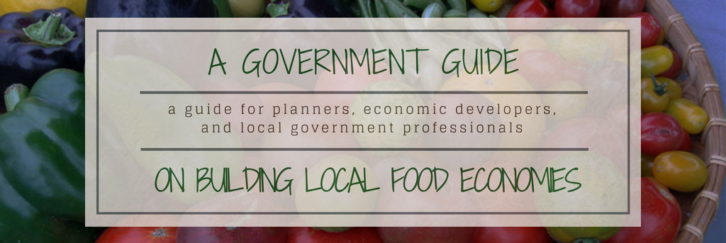 Local Government Guide banner