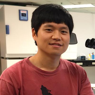 Jinlong Han