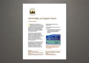 PDF Image