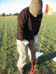 soil-sampling